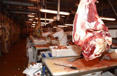 Gobierno y sector privado se alían en busca de mercados para carne