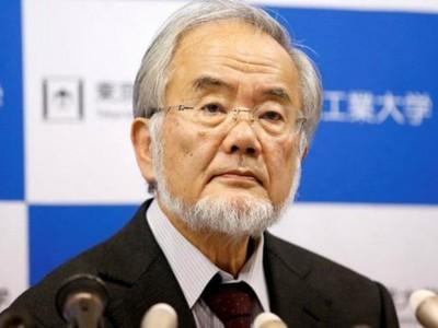Japonés se lleva el Nobel de Medicina 2016