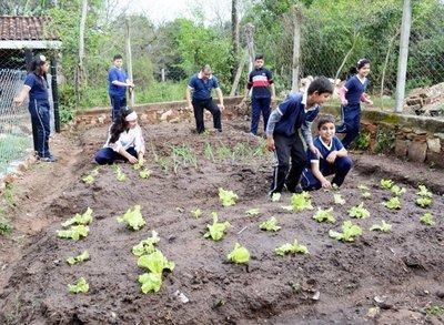 Implementan huerta en institución de Ypané