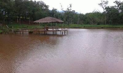Dos niños mueren ahogados  en Kaguarei