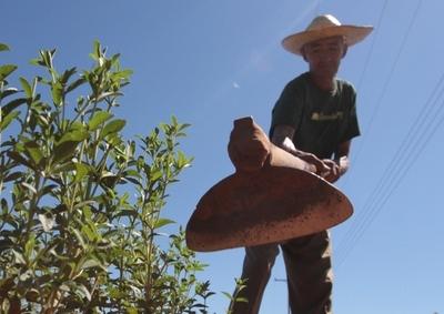 Itaipú y JICA aunarán esfuerzos para reducir la pobreza en el país
