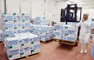 Frigorífico exportó más de 20.000 toneladas de carne en el año 2016
