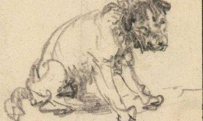 Museo hala dibujo de Rembrandt en sus fondos