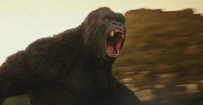 Kong: La Isla Calavera (3D)