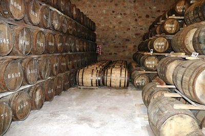 Paraguay busca replicar éxito de la Ruta del Tequila