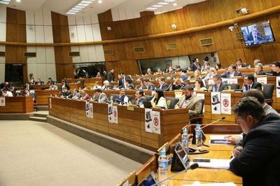 Diputados rechazó la enmienda