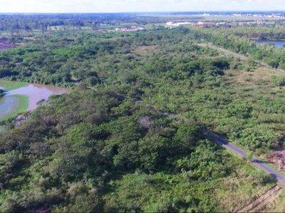Sí existen alternativas para detener las inundaciones sin devastar al Parque Guasu
