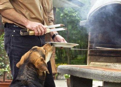 No es aconsejable alimentar al perro con restos del asado