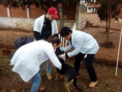Realizan vacunación antirrábica en San Ignacio Misiones