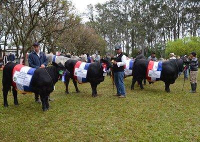 Seguridad para trabajar en paz, piden ganaderos
