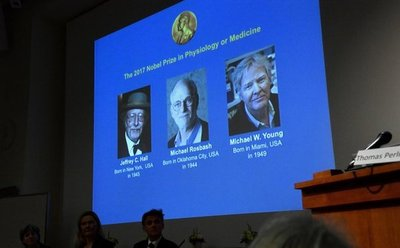 Estadounidenses ganan Nobel de Medicina
