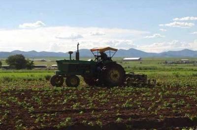 Menonitas del norte seguirán trabajando: FTC acompaña inicio de época de siembra