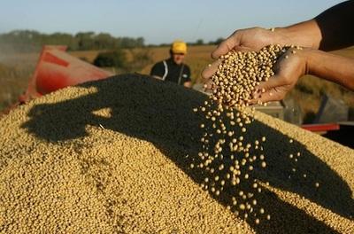 Argentina reducirá siembra de soja y Paraguay seguiría el camino contrario
