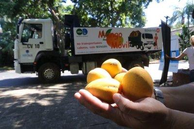 Juntan casi 2.000 kilos de mango en menos de 24 horas