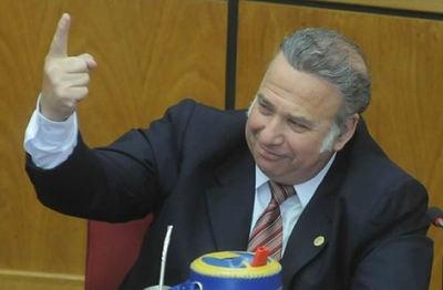 """Santiago Peña: """"González Daher no necesita que lo defienda"""""""