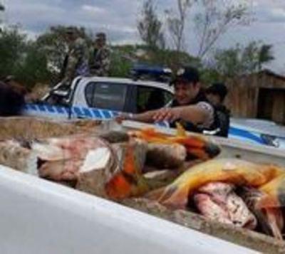 Incautan 500 kilos de pescado en Ayolas