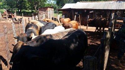 Detienen a sindicados abigeos en Arroyito