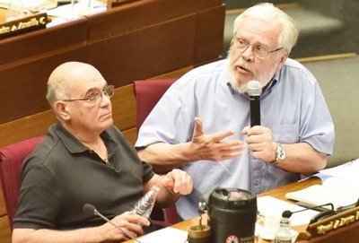 Piden que Ferreiro sea sancionado en la  Cámara Alta