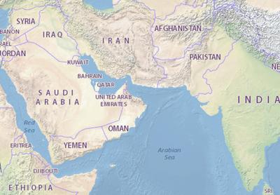 Proponen hacer alimentos procesados para el mundo árabe