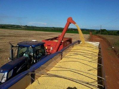 Exportación de soja: balanza comercial inicia el año en rojo