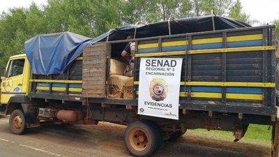 Hallan 1.700 kilos de marihuana en camión de tabaco