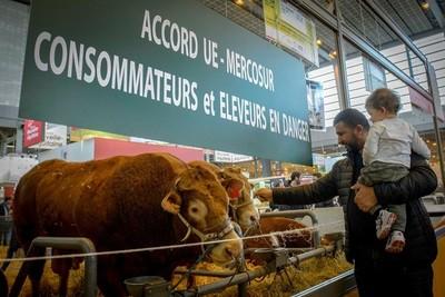 Acuerdo UE-Mercosur, en medio de la incertidumbre