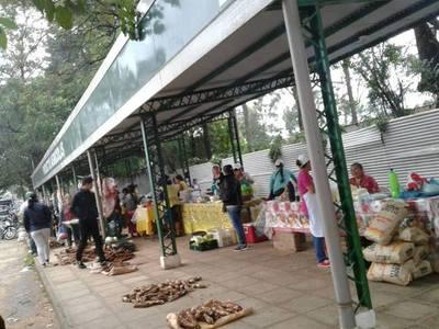 Pequeños productores logran importantes ingresos con ferias