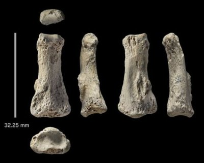 Hallan fósil humano más antiguo