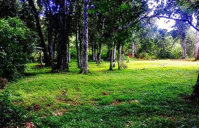 Reserva natural de CDE  necesita más protección