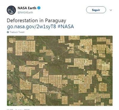 Nasa avista gran deforestación