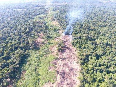 Niegan deforestación en Campos Morombí