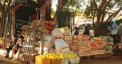 Crisis brasileña dispara precio de productos frutihortícolas en CDE