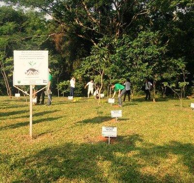 La UNA recibe prestigioso premio ambiental internacional