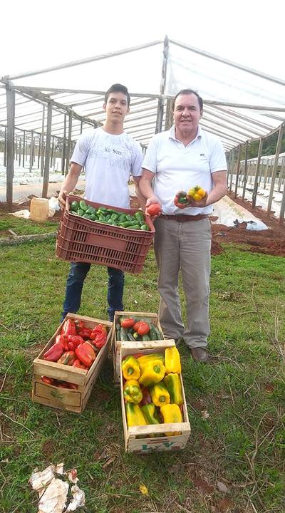 Productores de hortalizas piden acción para frenar el contrabando