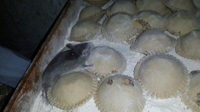 Inicia juicio a administradores de conocida distribuidora de empanadas
