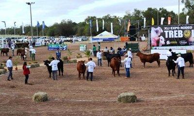 Del 11 al 19 de agosto se realizará Expo Trébol en el Chaco