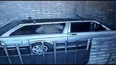 Filman presunto abuso sexual a un perro en San Lorenzo
