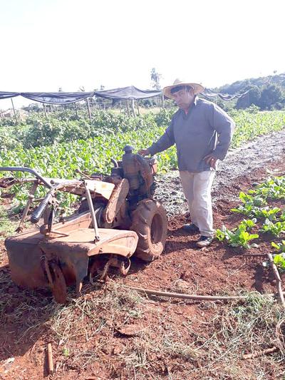 Buen clima posibilita buena producción hortigranjera
