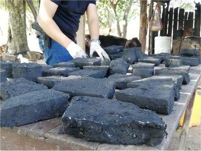 Desmantelan laboratorio de procesamiento de cocaína