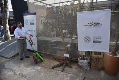 Presentan la arrancadora de mandioca en la Expo