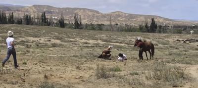 VIDEO: Águila atacó a una nena de 8 años