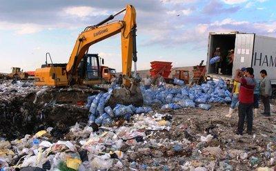 Destruyen cargamento de ajo por incumplir normas de calidad