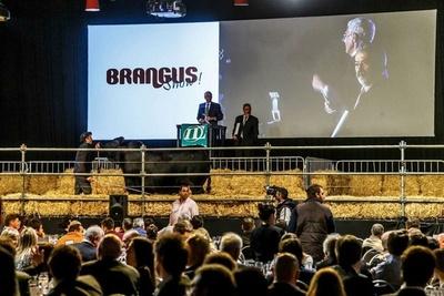 La cabaña paraguaya Los Lazos compró en Palermo el 50% de una vaca Brangus en más de 50 mil dólares