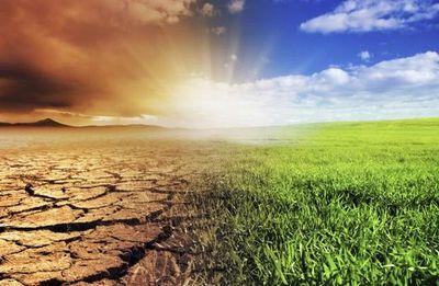 Los próximos cuatro años serán aún más calurosos, según un estudio