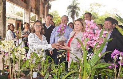 Crearán un Paseo de las Orquídeas
