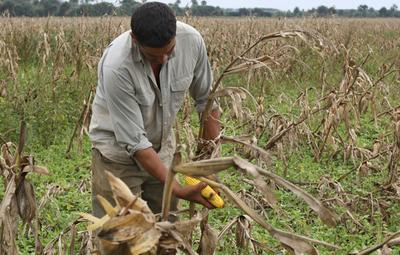 Pretenden otorgar servicios de calidad a productores