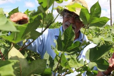 Itaipú abre la canilla a la agricultura campesina con casi USD 5 millones