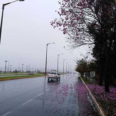 Pronostican lluvias en gran parte del territorio nacional