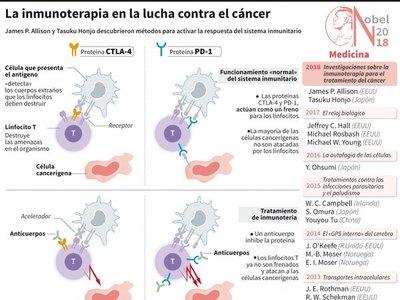 Nobel de Medicina para investigación de  inmunoterapias contra el cáncer