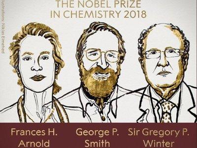 Nobel de Química por avances en el desarrollo de proteínas